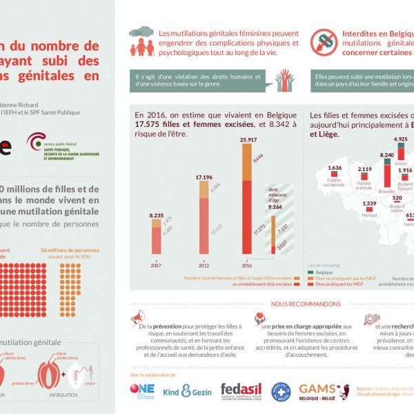Thumbnail for Etude prévalence sur les mutilations génitales féminines